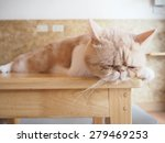 Stock photo cat sleeping on wood table 279469253