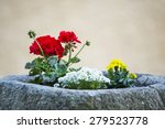 Small photo of geranium and marigold flowers potted in a stone cist