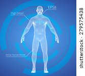 3d mesh human body medical scan ... | Shutterstock .eps vector #279575438