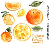 Set Of Oranges Painted With...