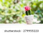 beautiful pink head cactus | Shutterstock . vector #279955223