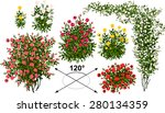 Stock vector  roses isometric trees in vector 280134359