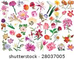illustration with different... | Shutterstock .eps vector #28037005