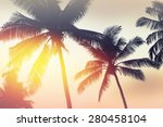 Palmtrees Silhouette On Sunris...