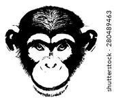 Monkey Head Avatar  Chinese...