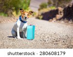 Stock photo jack russell dog abandoned and left all alone on the road or street with luggage bag or suitcase 280608179