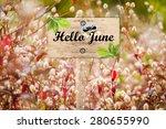 Hello June Signpost In...
