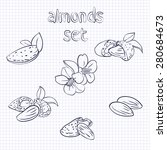 vector set of almond nuts and... | Shutterstock .eps vector #280684673