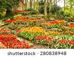 Tulips Park Keukenhof   Flower...