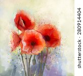 Water Color Red Poppy Flowers...
