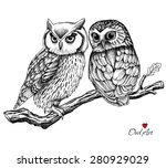 Stock vector image of two owls on a branch vector illustration 280929029