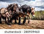 north swedish drafts working on ... | Shutterstock . vector #280939463