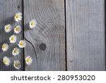 daisy flowers on weathered wood ... | Shutterstock . vector #280953020