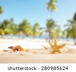 sandy beach with seashells ...   Shutterstock . vector #280985624