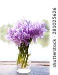 bouquet of purple flowers in a...   Shutterstock . vector #281025626