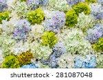 flower bouquets   bunch of... | Shutterstock . vector #281087048