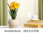 beautiful daffodils in pot with ...   Shutterstock . vector #281111558