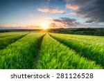 sunset over fileds of ripening... | Shutterstock . vector #281126528
