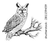 Vector Owl On A Branch. White...