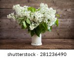 Still Life. Bouquet Of White...