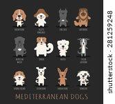 Set Of Mediterranean Dogs  ...