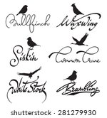 birds lettering with silhouette ... | Shutterstock .eps vector #281279930