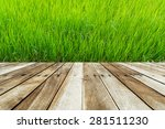wood floor on paddy field | Shutterstock . vector #281511230