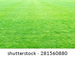 Fresh Spring Green Grass...