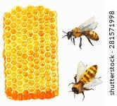 watercolor honeycomb and bee... | Shutterstock .eps vector #281571998