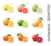 set of polygonal citrus fruit   ... | Shutterstock .eps vector #281647010