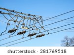 Trolley Overhead Line Wire...