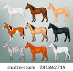 Stock vector table colors of horses vector 281862719