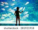 little boy  kid watching the... | Shutterstock . vector #281921918