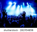 silhouettes of concert crowd in ... | Shutterstock . vector #281954858