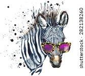funny zebra  t shirt graphics ... | Shutterstock . vector #282138260