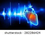 digital illustration of human...   Shutterstock . vector #282286424