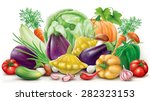 group of different colorful... | Shutterstock . vector #282323153