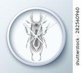 vector illustration of stylized ... | Shutterstock .eps vector #282560960