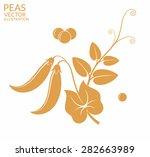 peas. vector illustration | Shutterstock .eps vector #282663989