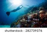 lady freediver gliding... | Shutterstock . vector #282739376