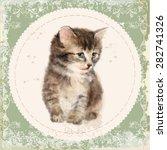 vintage card with fluffy kitten.... | Shutterstock .eps vector #282741326