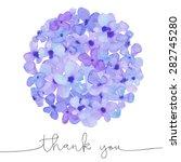 watercolor hydrangea flower...   Shutterstock . vector #282745280