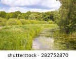 Small photo of Little creek in Springtime, Pfefferfliess. Was seen near Bad Belzig, in Brandenburg, in the Nuthe-Nieplitz Nature Park. This landscape is a result of land amelioration.