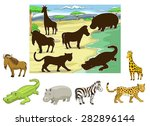 match the animals to their... | Shutterstock .eps vector #282896144