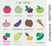collection of 12 vegetables... | Shutterstock .eps vector #282971003