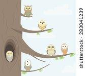 Owls On A Tree