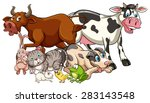 domestic animals on a white... | Shutterstock .eps vector #283143548