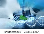 science  chemistry  biology and ... | Shutterstock . vector #283181264