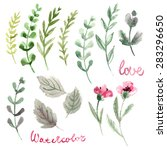 set of flowers painted in... | Shutterstock . vector #283296650