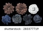 Set Of Fabric Flower Isolated...